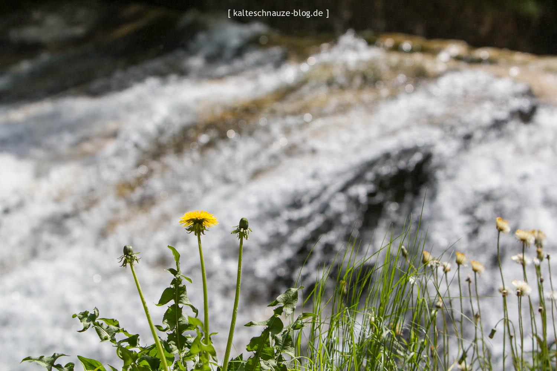 poellatschlucht-allgaeu-05-3