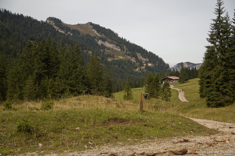Vilser Alpe in Österreich