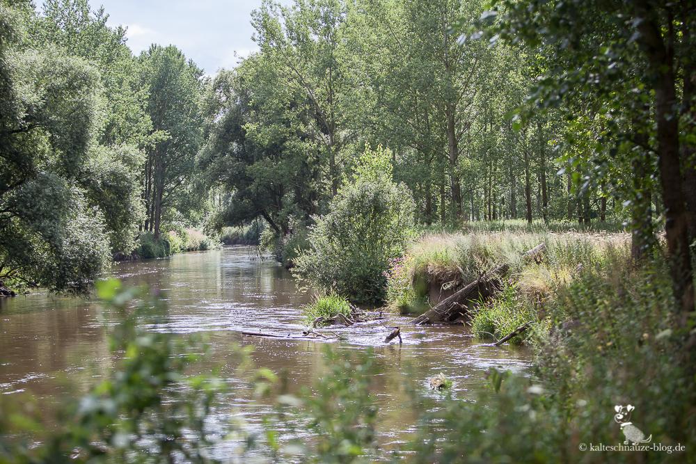 Premiumwanderweg Rode Beek: Flussaue an der Rur.