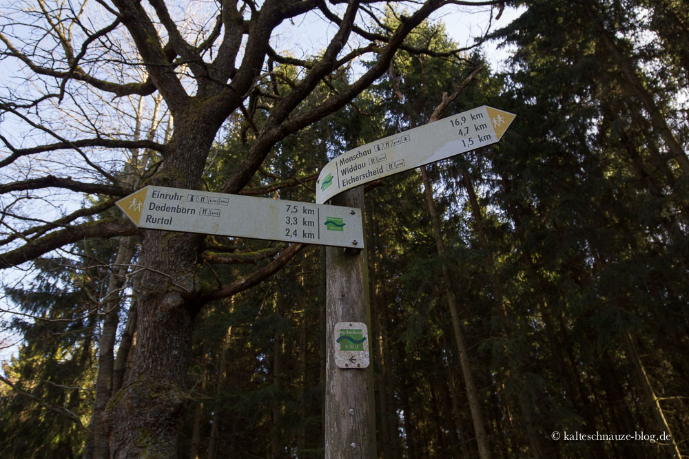 Heckenlandroute-8812