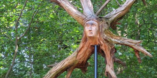 Wurzelskulptur am Dürres Maar.