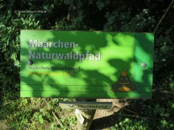 """Am Holzmaar zwischen Gillenfeld und Eckfeld befindet sich der """"Määrchen-Naturwaldpfad""""."""