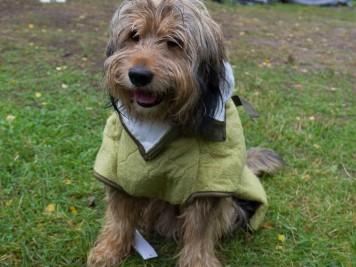 Bobby trägt den Mantel zum ersten Mal.