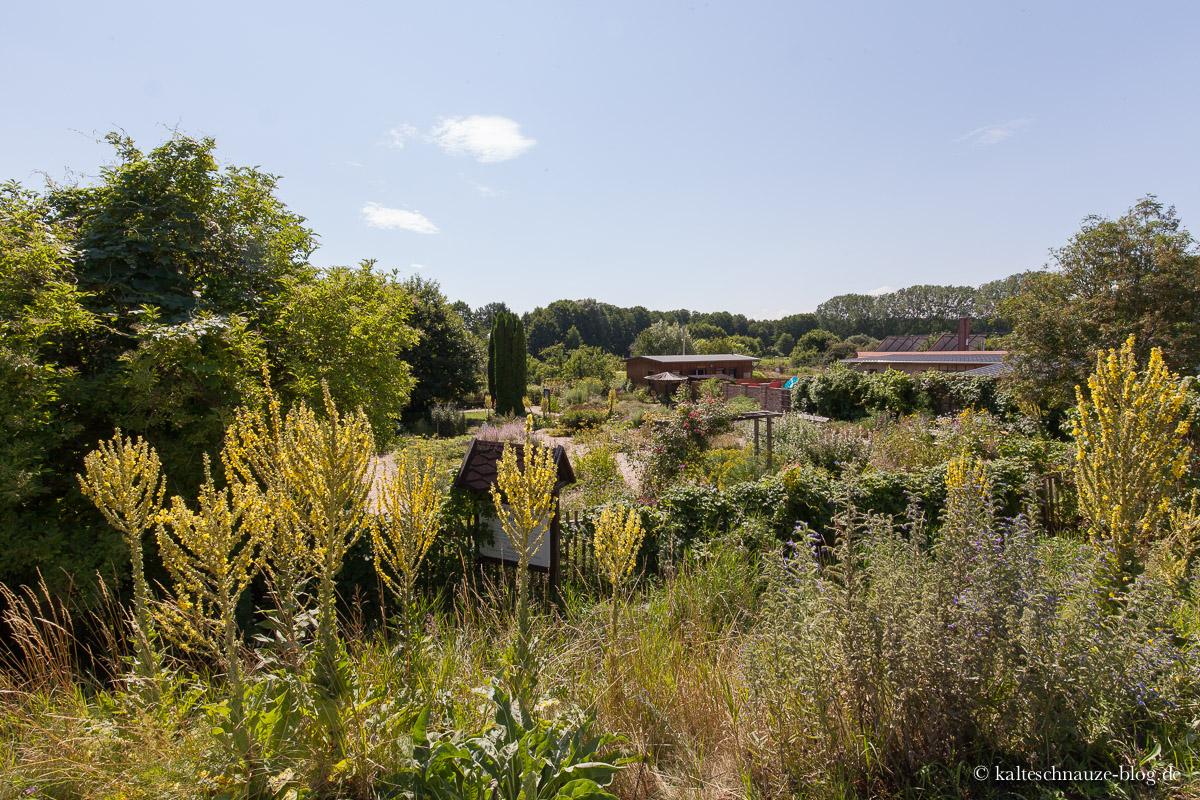 Der Kloster-Kräutergarten