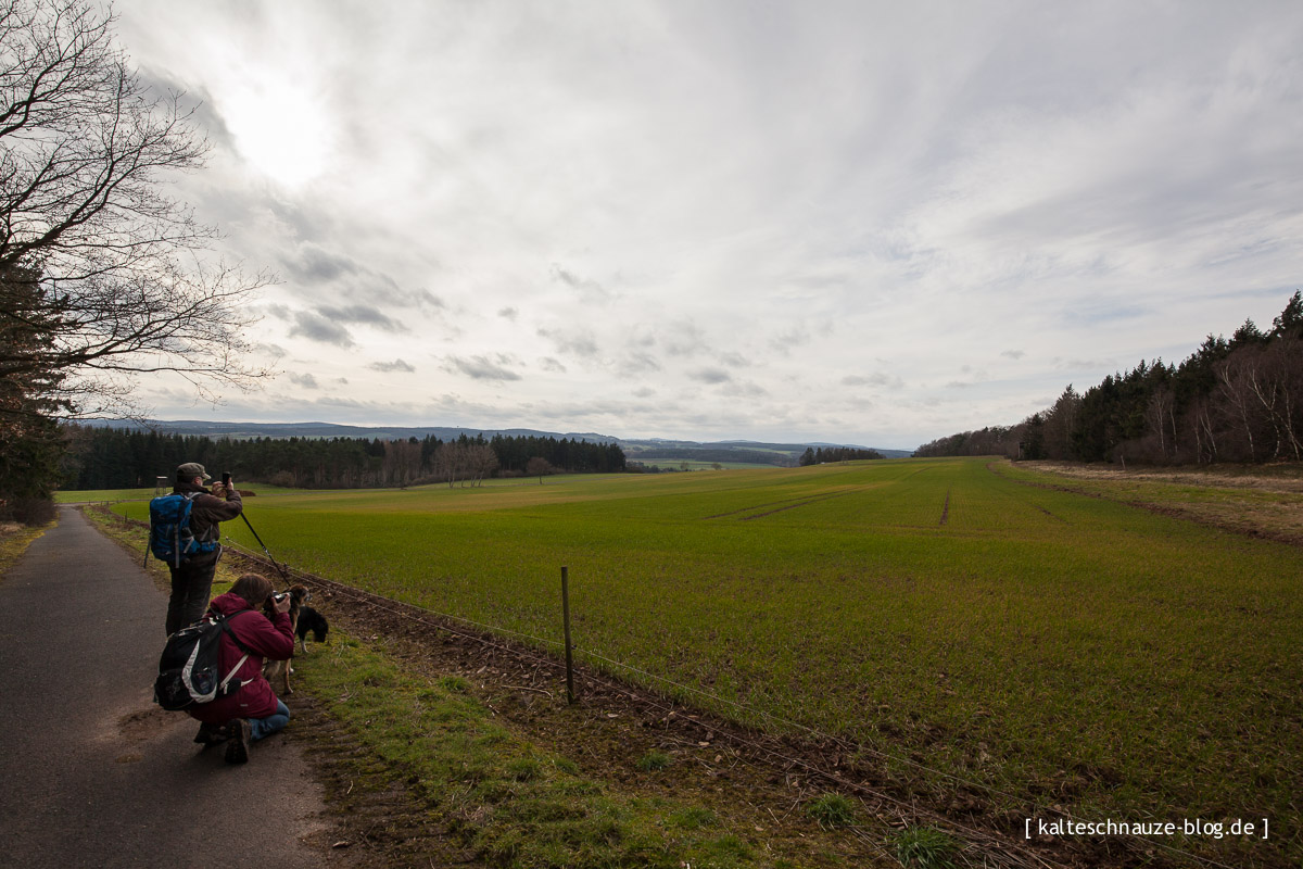 Rundweg-3-Mechernich-Eifel-3772