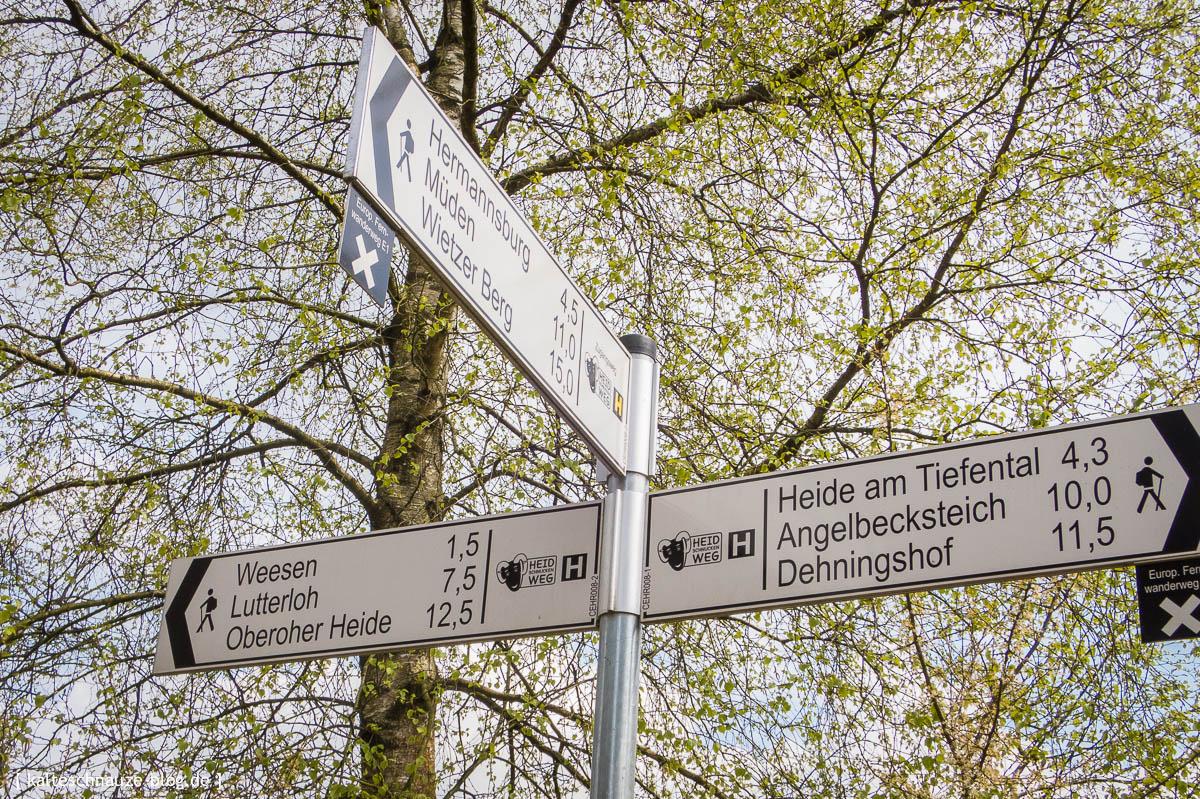 hermannsburg-misselhorner-heide-tiefental-9992