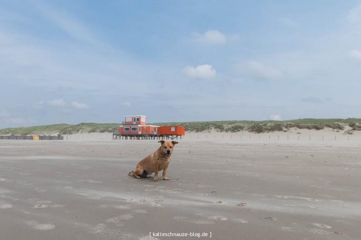 sint-maartenszee-strand-camping-0027