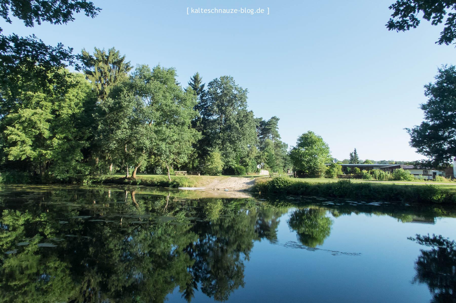 lueneburger-heide-juli-2016-0488