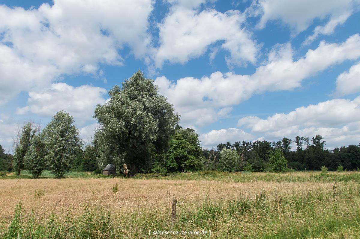 schoenste-wanderroute-sevenum-limburg-0138