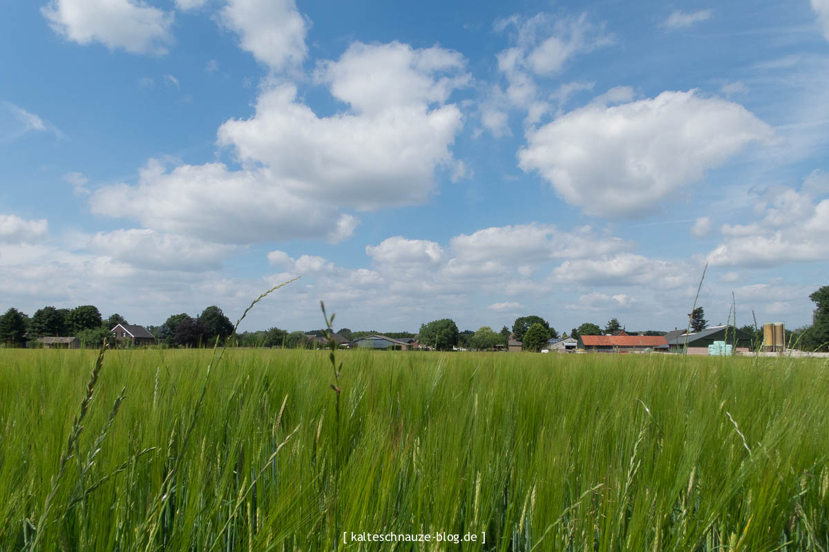 Schönste Wanderroute - Sevenum - Provinz Limburg - Niederlande