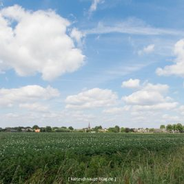 schoenste-wanderroute-sevenum-limburg-0156