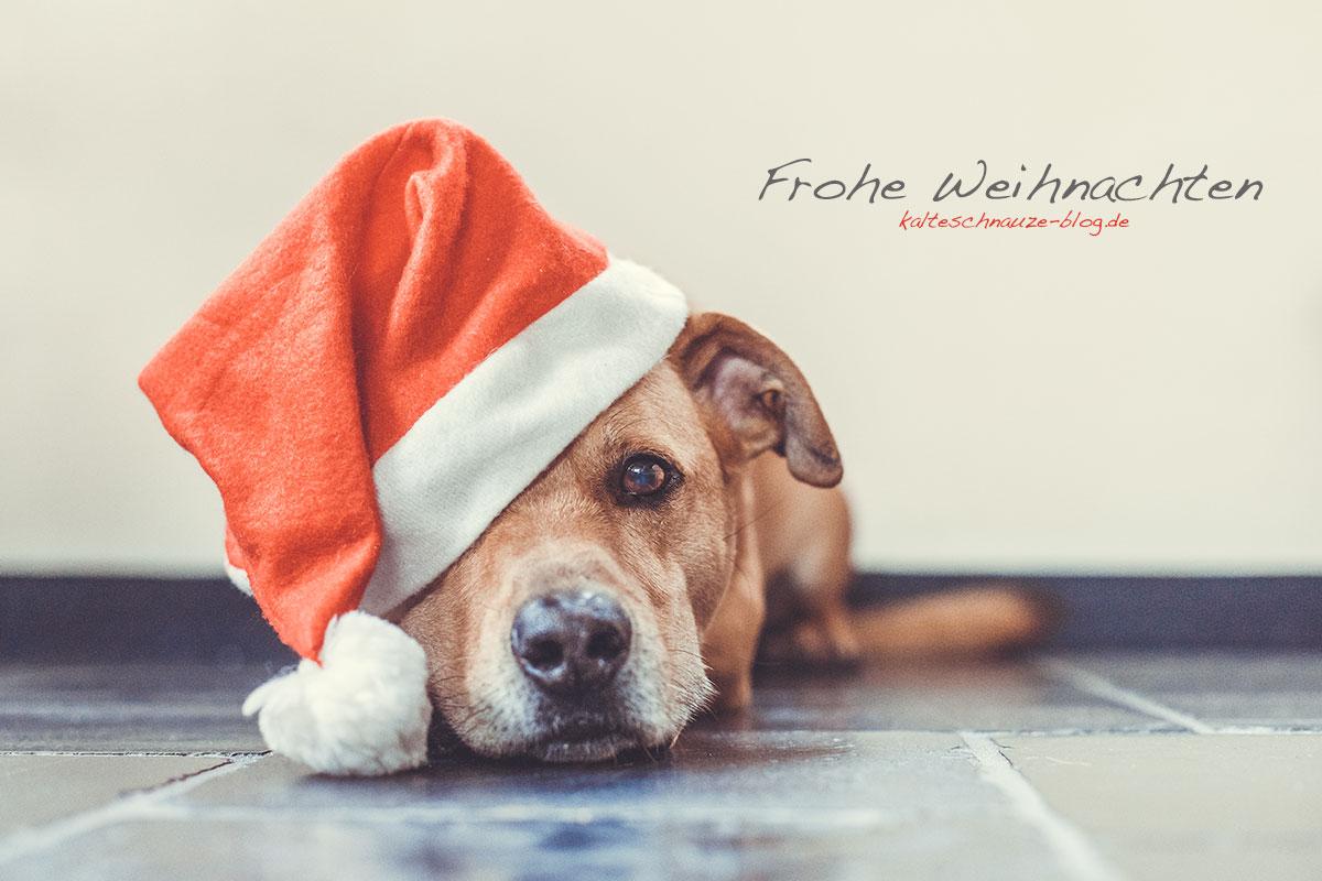frohe-weihnachten-cabo_6770
