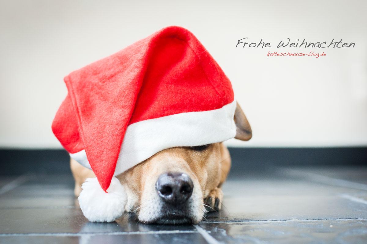 frohe-weihnachten-cabo_6775