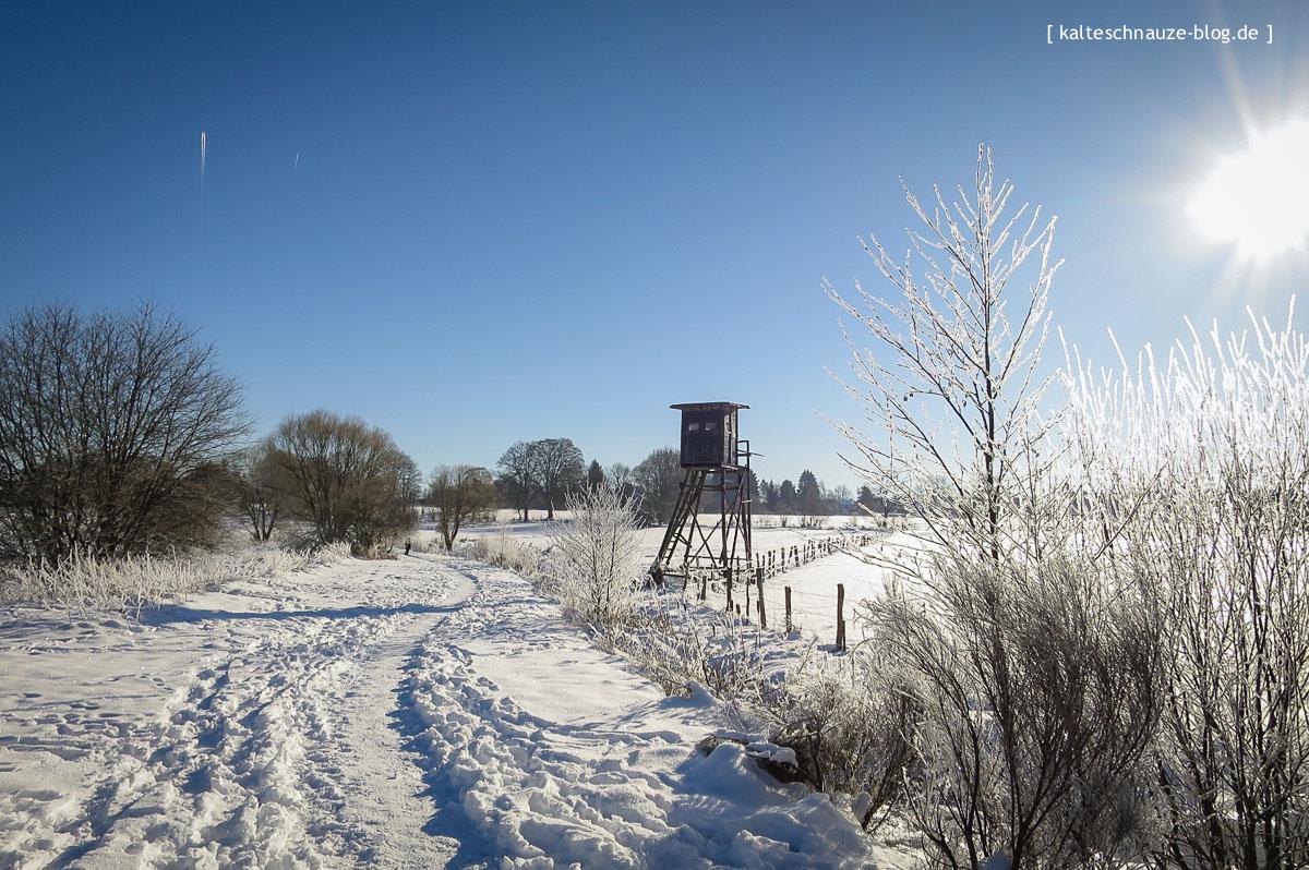 roetgen-eifel-schneewanderung-kalteschnauzeblog-0825