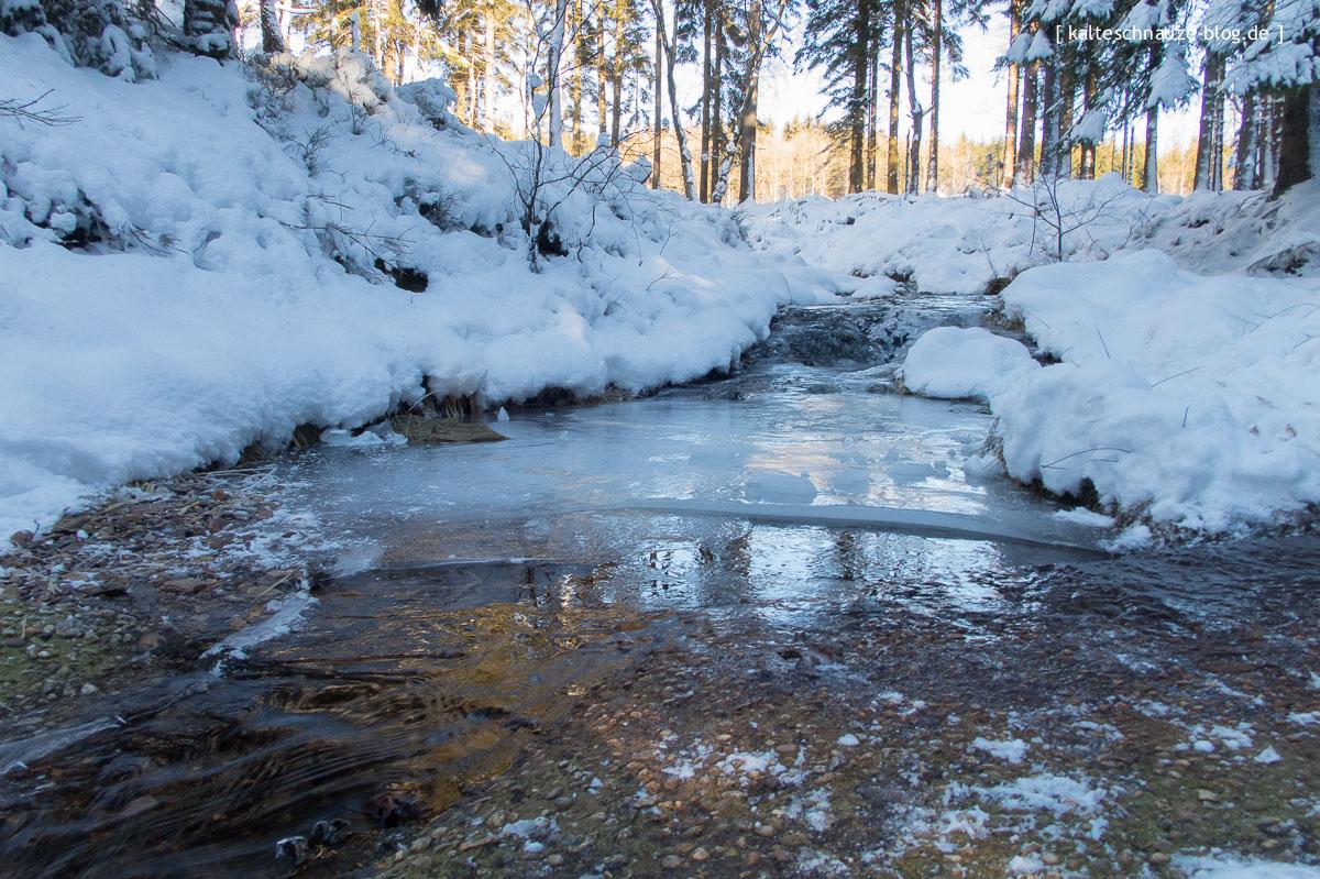 roetgen-eifel-schneewanderung-kalteschnauzeblog-0846