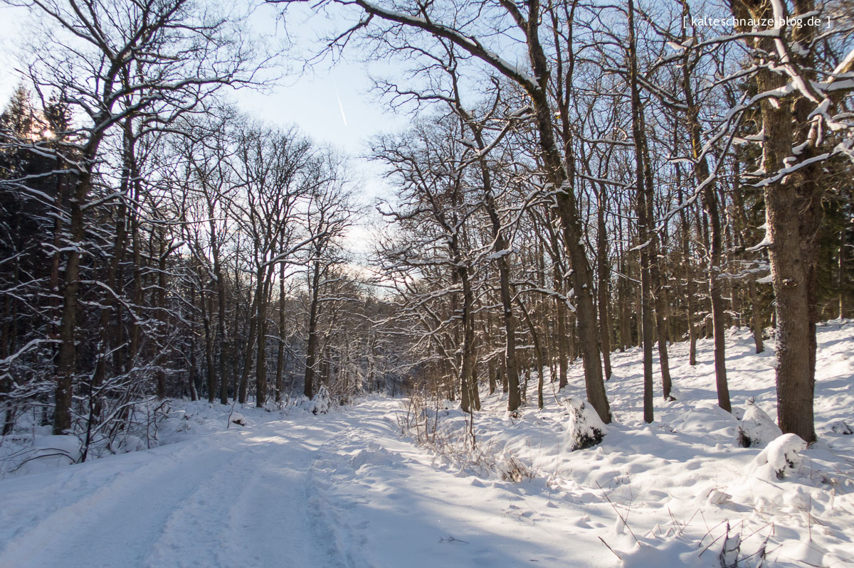 roetgen-eifel-schneewanderung-kalteschnauzeblog-0905