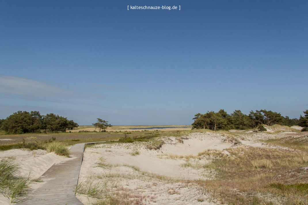 Darßer Ort - Naturpark Vorpommersche Boddenlandschaft