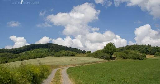 Tolle Aussichten auf dem Weg zum Sulzbusch - Traumpfad Vier-Berge-Tour