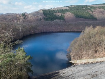 Von der Urfttalsperre sieht man auf den Obersee.
