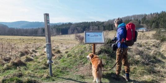 Die Dilborner Hochfläche im Nationalpark Eifel.